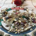 Cowry Shell Readings with Jan Lucier